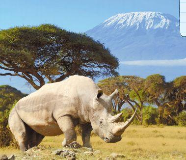 парк Килиманджаро